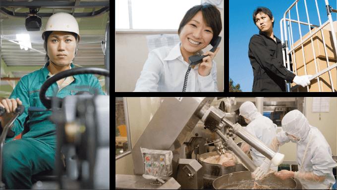 食品加工工場、販売員、倉庫関連、事務員派遣等幅広い業界において一般派遣事業を展開しております。